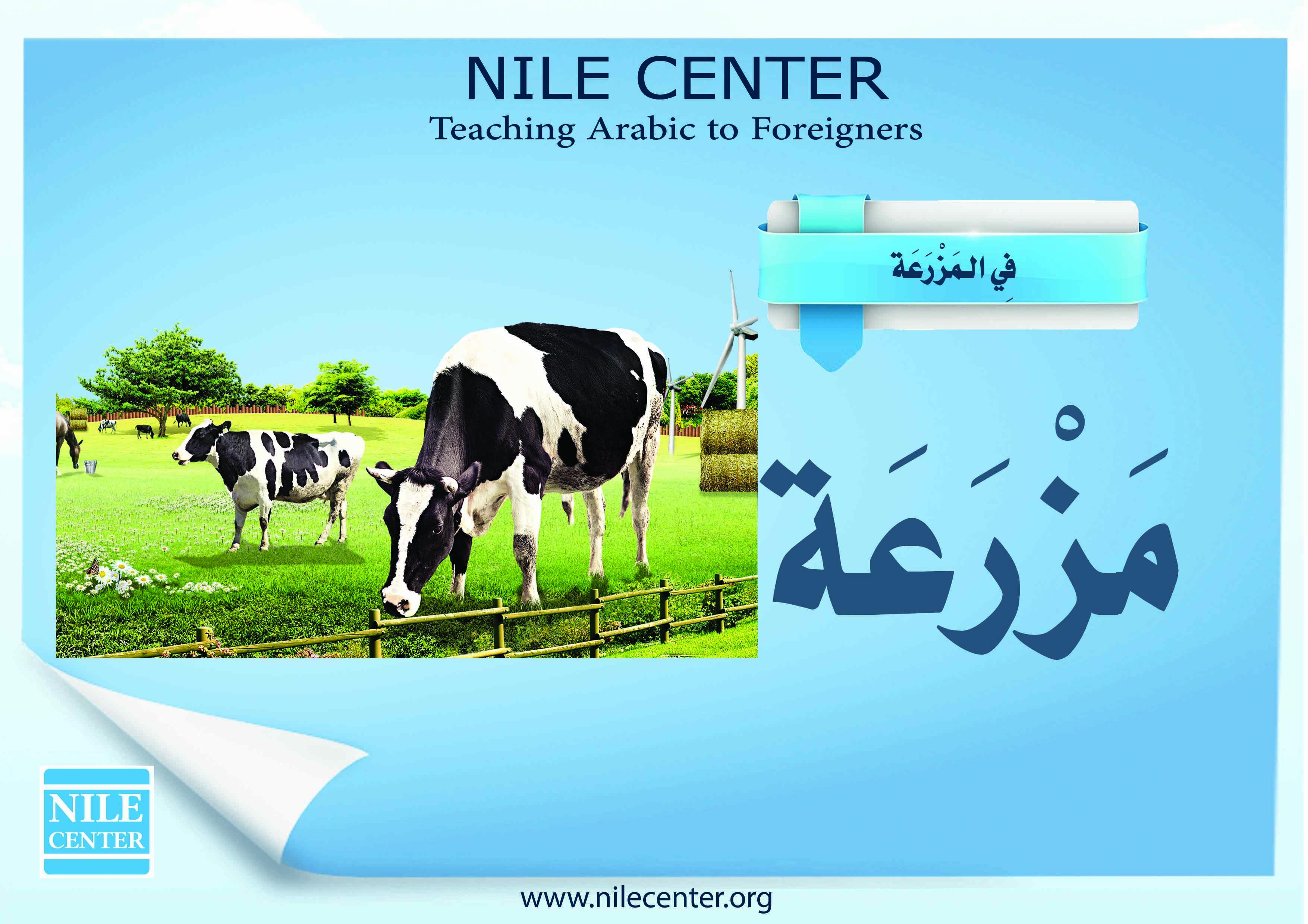On the Farm in Arabic