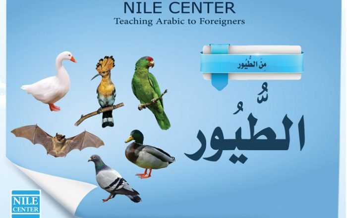 THE BIRDS IN ARABIC