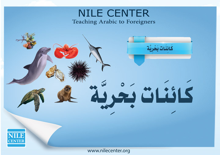 The World of the Sea in Arabic